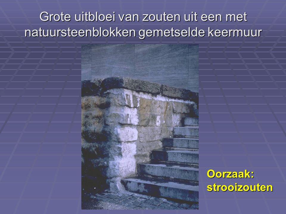 Grote uitbloei van zouten uit een met natuursteenblokken gemetselde keermuur Oorzaak:strooizouten
