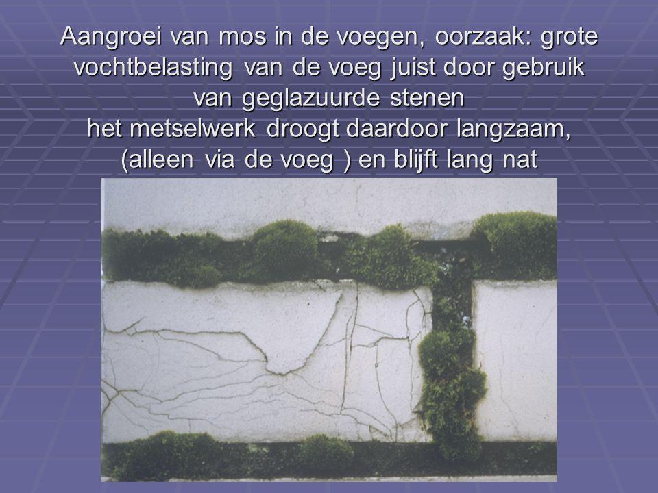 Aangroei van mos in de voegen, oorzaak: grote vochtbelasting van de voeg juist door gebruik van geglazuurde stenen het metselwerk droogt daardoor lang