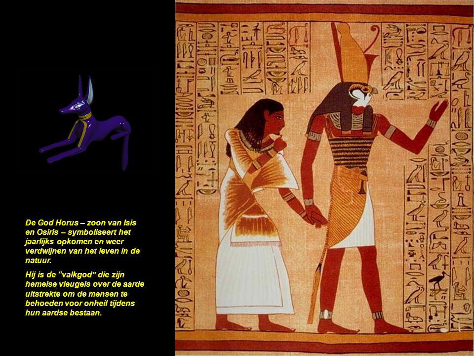 De hoogte en omtrek van de pyramide: (146,73m) X 2 X PI = 921,46 mtr