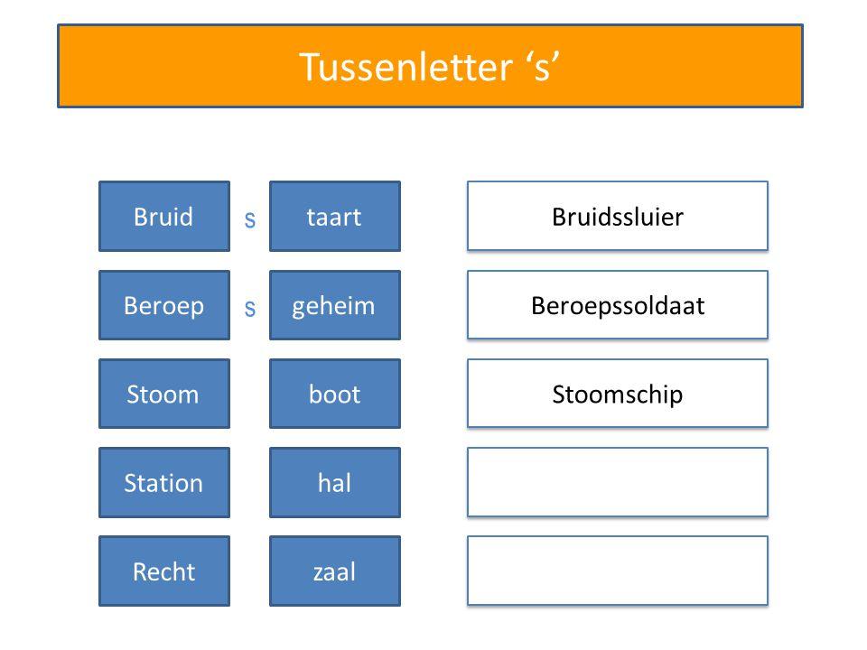 Tussenletter 's' Bruidssluier Beroepssoldaat Bruidtaart Beroepgeheim Stoomschip Stoomboot Stationhal Rechtzaal s s