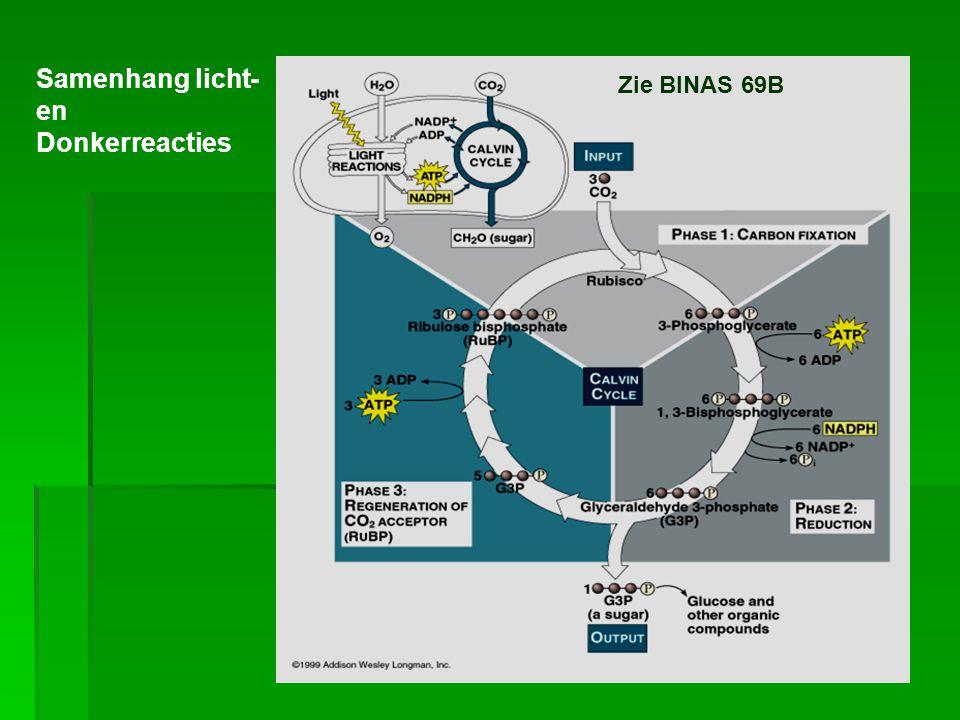 Zie BINAS 69B Samenhang licht- en Donkerreacties