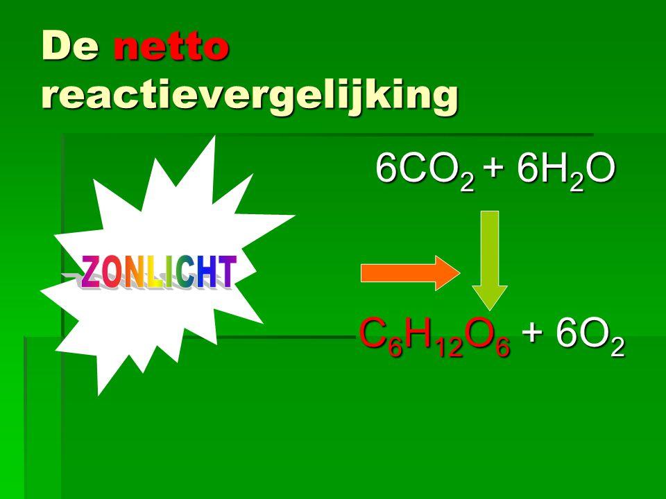 De netto reactievergelijking 6CO 2 + 6H 2 O 6CO 2 + 6H 2 O C 6 H 12 O 6 + 6O 2 C 6 H 12 O 6 + 6O 2