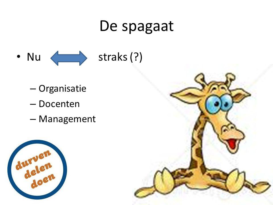 De spagaat Nu straks (?) – Organisatie – Docenten – Management
