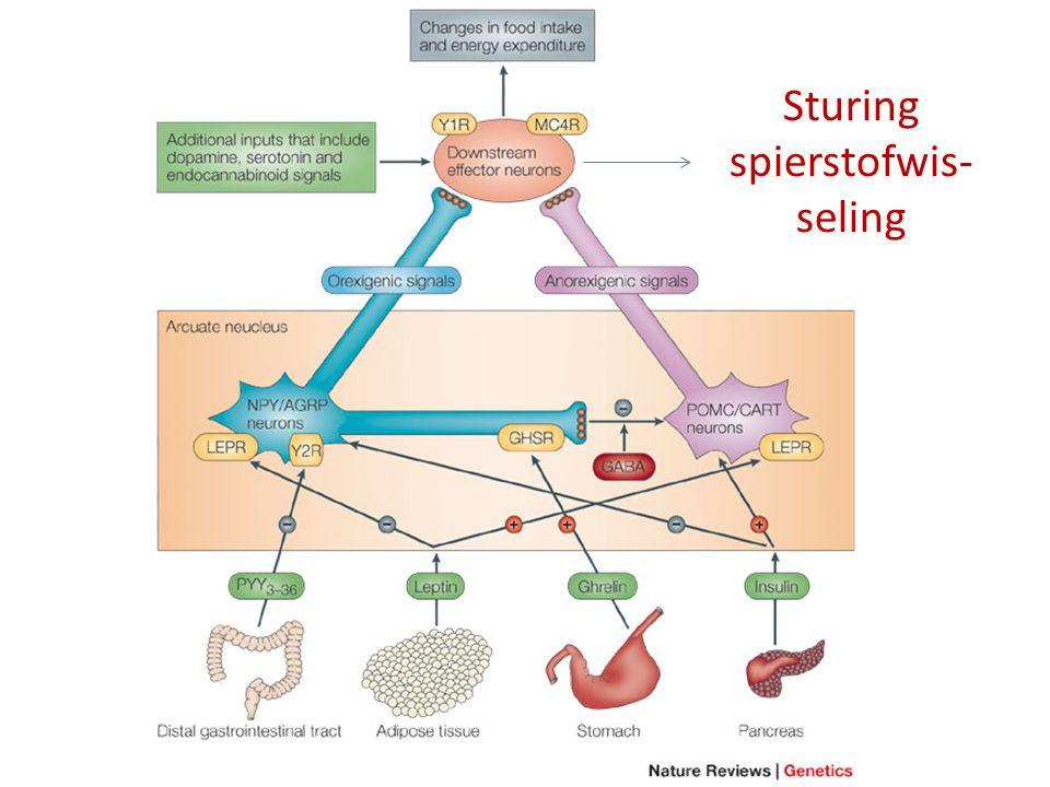 Sturing spierstofwis- seling