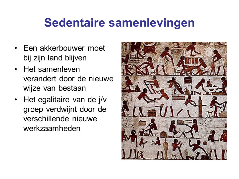 Sedentaire samenlevingen Een akkerbouwer moet bij zijn land blijven Het samenleven verandert door de nieuwe wijze van bestaan Het egalitaire van de j/