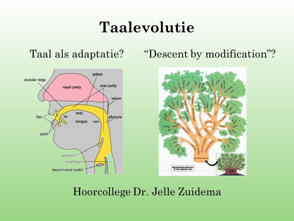 """Taalevolutie Taal als adaptatie? """"Descent by modification""""? Hoorcollege Dr. Jelle Zuidema"""