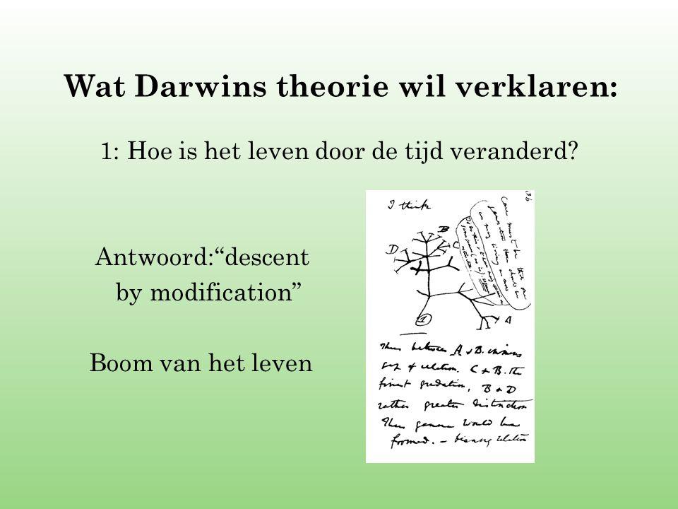 """Wat Darwins theorie wil verklaren: 1: Hoe is het leven door de tijd veranderd? Antwoord:""""descent by modification"""" Boom van het leven"""