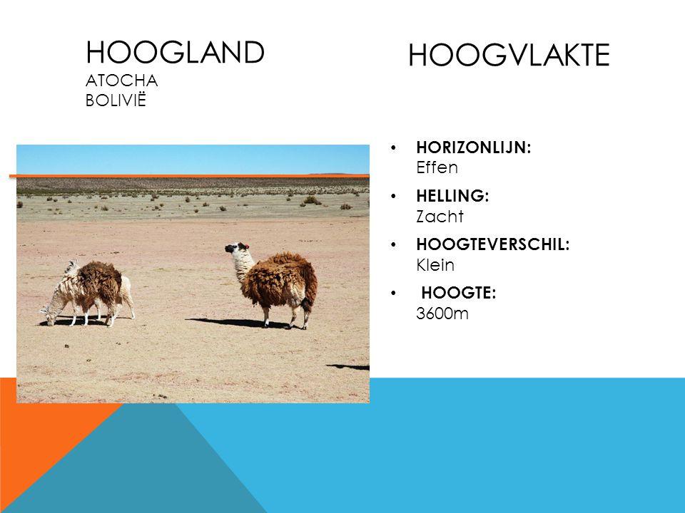HOOGLAND ATOCHA BOLIVIË HOOGVLAKTE HORIZONLIJN: Effen HELLING: Zacht HOOGTEVERSCHIL: Klein HOOGTE: 3600m