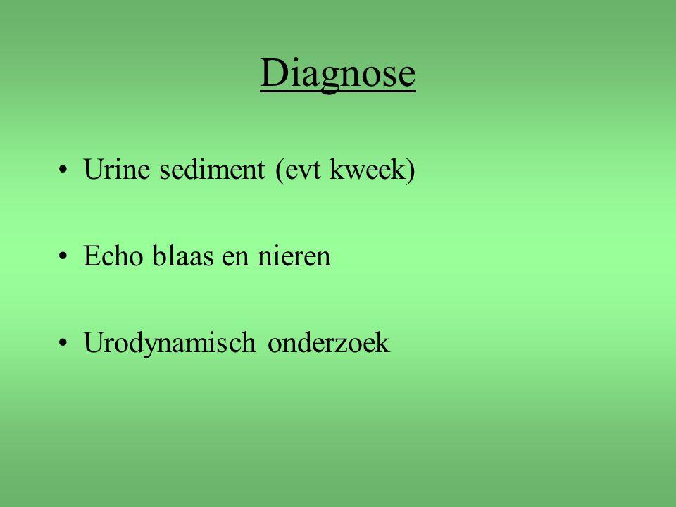 Diagnose Urine sediment (evt kweek) Echo blaas en nieren Urodynamisch onderzoek