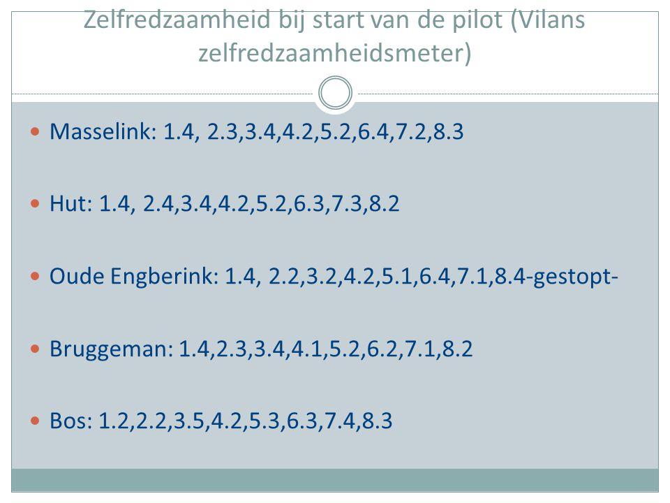 Zelfredzaamheid bij start van de pilot (Vilans zelfredzaamheidsmeter) Masselink: 1.4, 2.3,3.4,4.2,5.2,6.4,7.2,8.3 Hut: 1.4, 2.4,3.4,4.2,5.2,6.3,7.3,8.