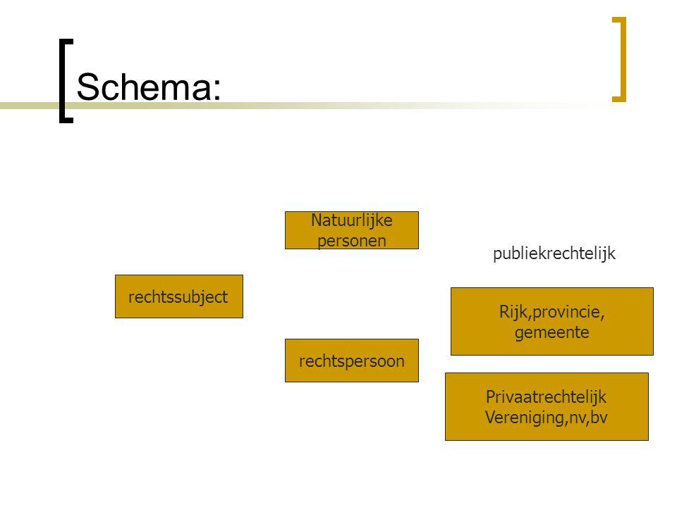 Schema: rechtssubject Natuurlijke personen rechtspersoon Rijk,provincie, gemeente Privaatrechtelijk Vereniging,nv,bv publiekrechtelijk