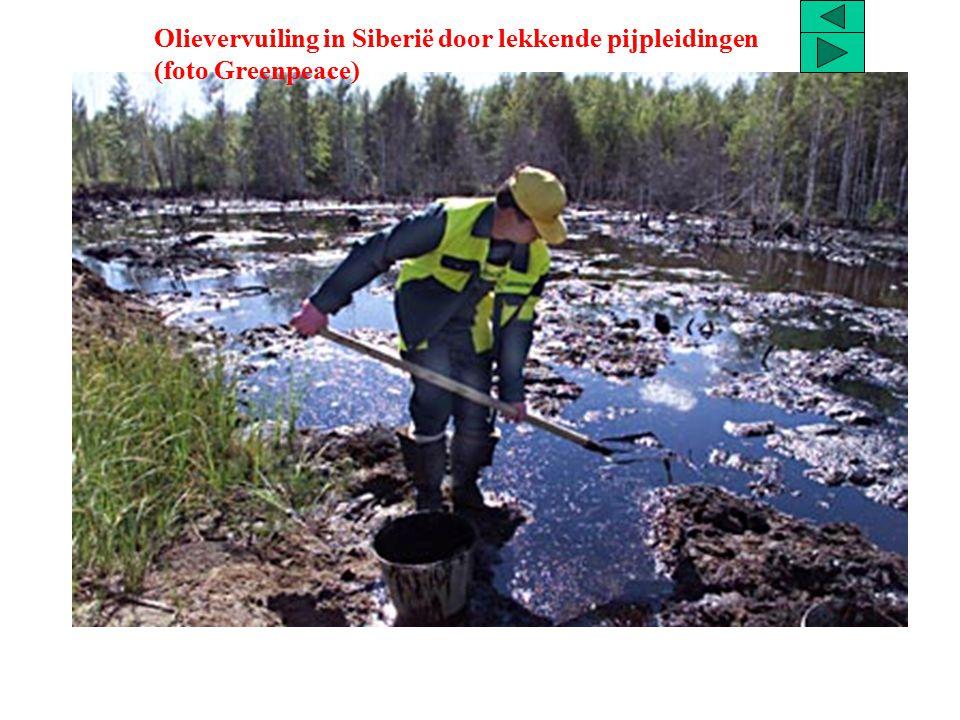 Olievervuiling in Siberië door lekkende pijpleidingen (foto Greenpeace)