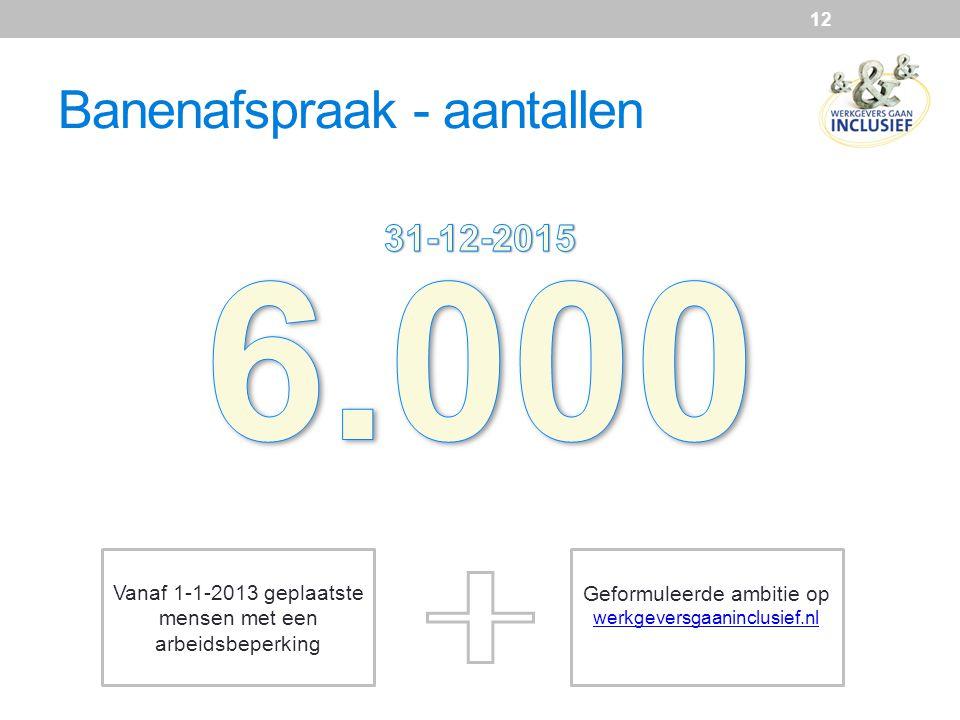 Banenafspraak - aantallen 12 Vanaf 1-1-2013 geplaatste mensen met een arbeidsbeperking Geformuleerde ambitie op werkgeversgaaninclusief.nl