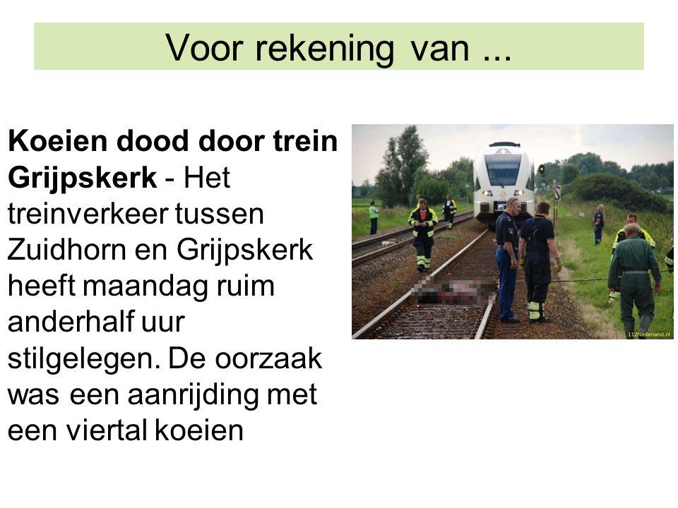 Koeien dood door trein Grijpskerk - Het treinverkeer tussen Zuidhorn en Grijpskerk heeft maandag ruim anderhalf uur stilgelegen. De oorzaak was een aa