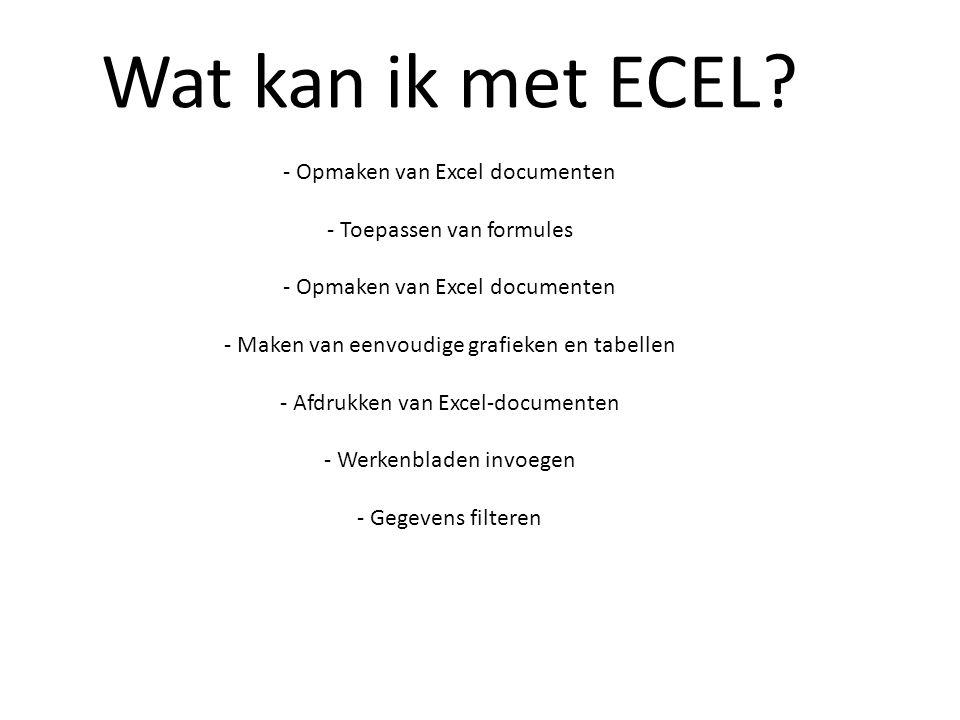 Wat kan ik met ECEL? - Opmaken van Excel documenten - Toepassen van formules - Opmaken van Excel documenten - Maken van eenvoudige grafieken en tabell