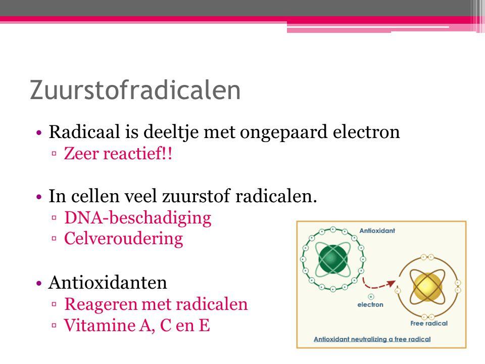 Zuurstofradicalen Radicaal is deeltje met ongepaard electron ▫Zeer reactief!! In cellen veel zuurstof radicalen. ▫DNA-beschadiging ▫Celveroudering Ant
