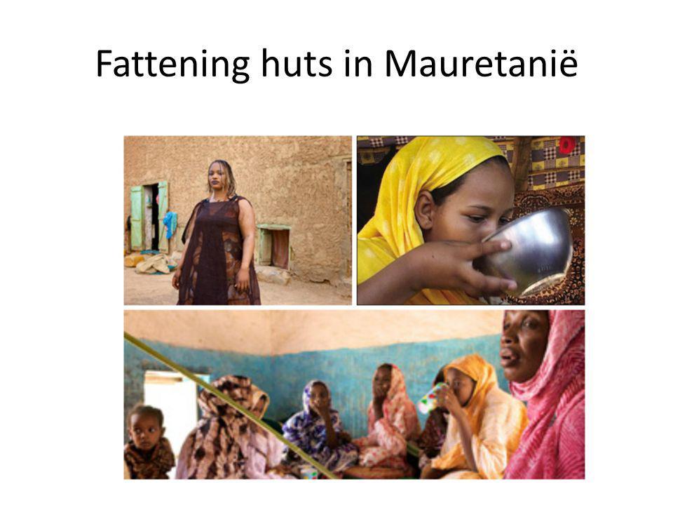 Fattening huts in Mauretanië