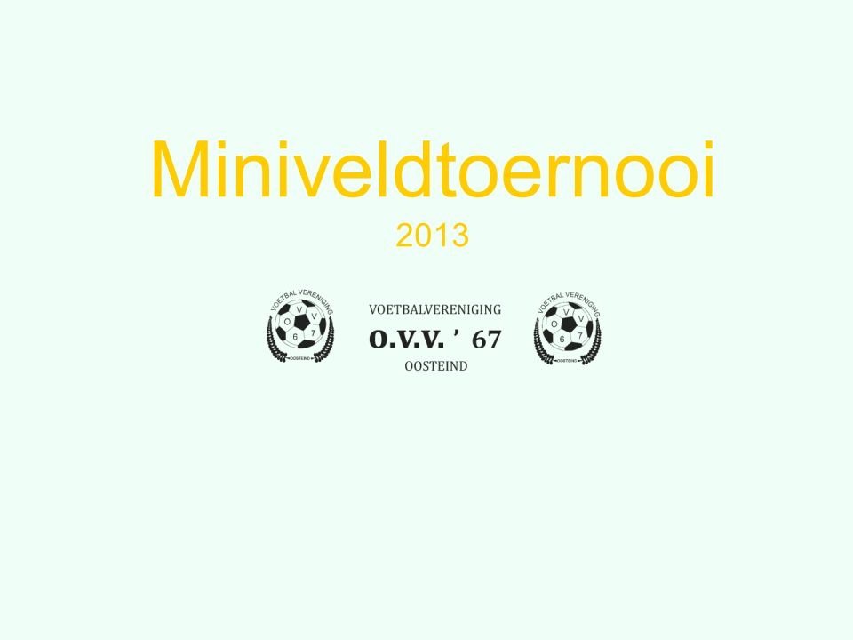 Miniveldtoernooi 2013