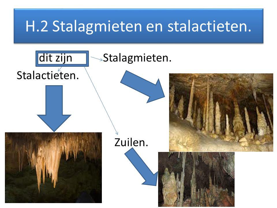 H.12 Vragen.Vraag 1 hoeveel grotten zijn er in Nederland.
