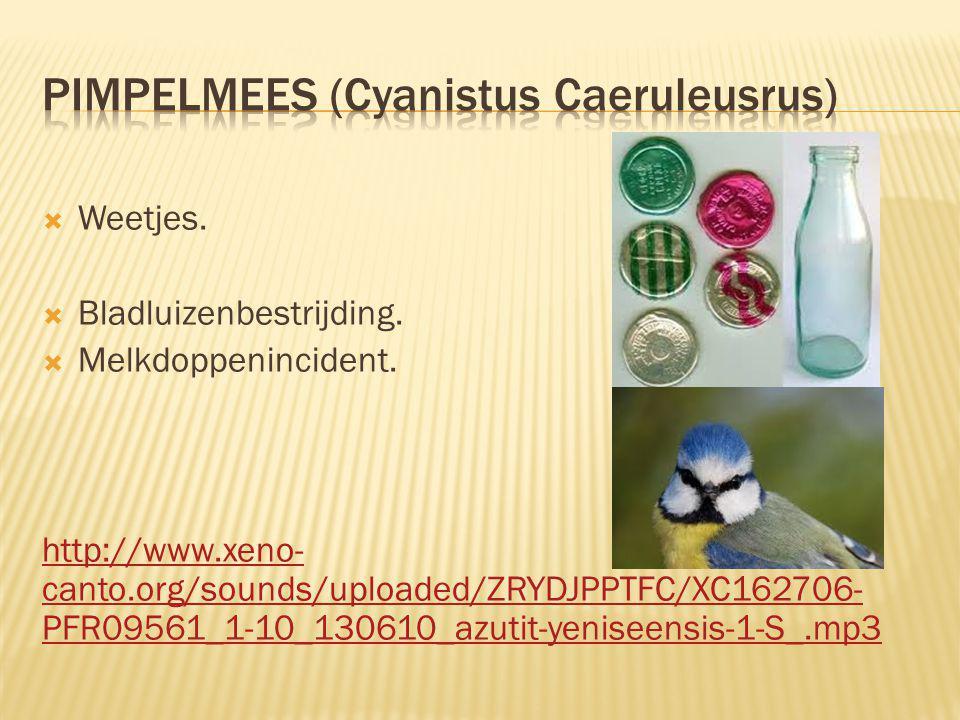  Weetjes.  Bladluizenbestrijding.  Melkdoppenincident. http://www.xeno- canto.org/sounds/uploaded/ZRYDJPPTFC/XC162706- PFR09561_1-10_130610_azutit-