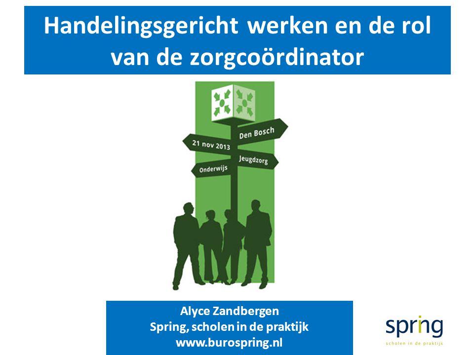 Handelingsgericht werken en de rol van de zorgcoördinator Alyce Zandbergen Spring, scholen in de praktijk www.burospring.nl