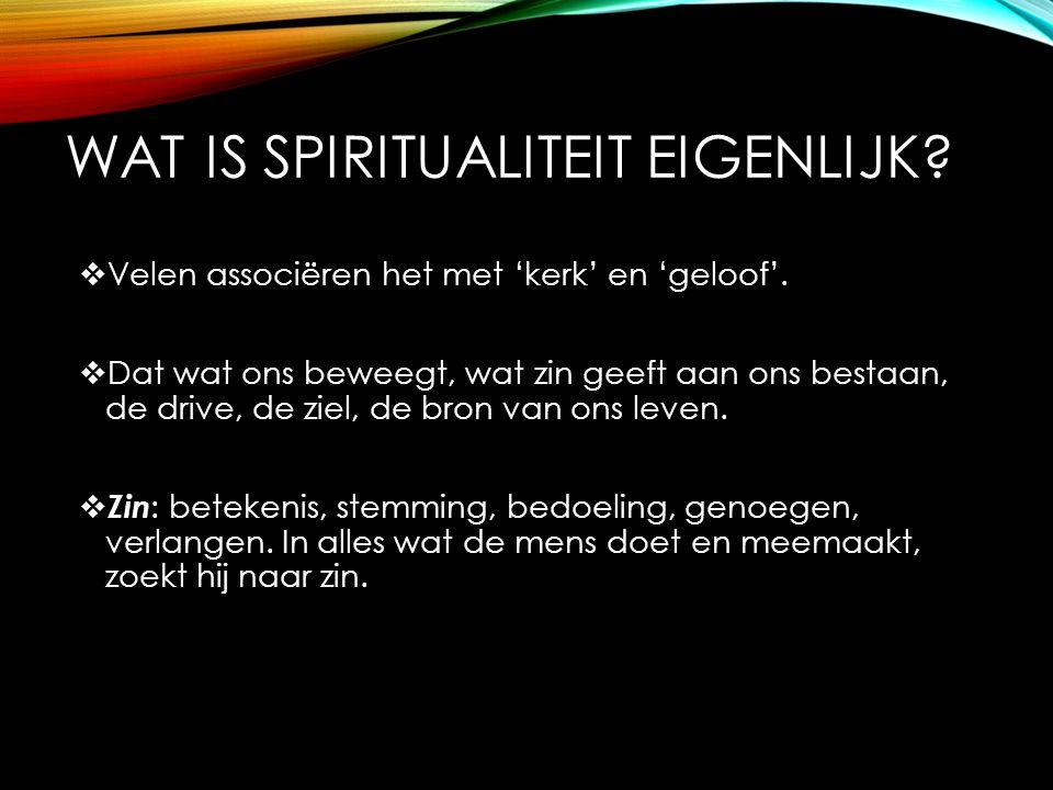 WAT IS SPIRITUALITEIT EIGENLIJK?  Velen associëren het met 'kerk' en 'geloof'.  Dat wat ons beweegt, wat zin geeft aan ons bestaan, de drive, de zie