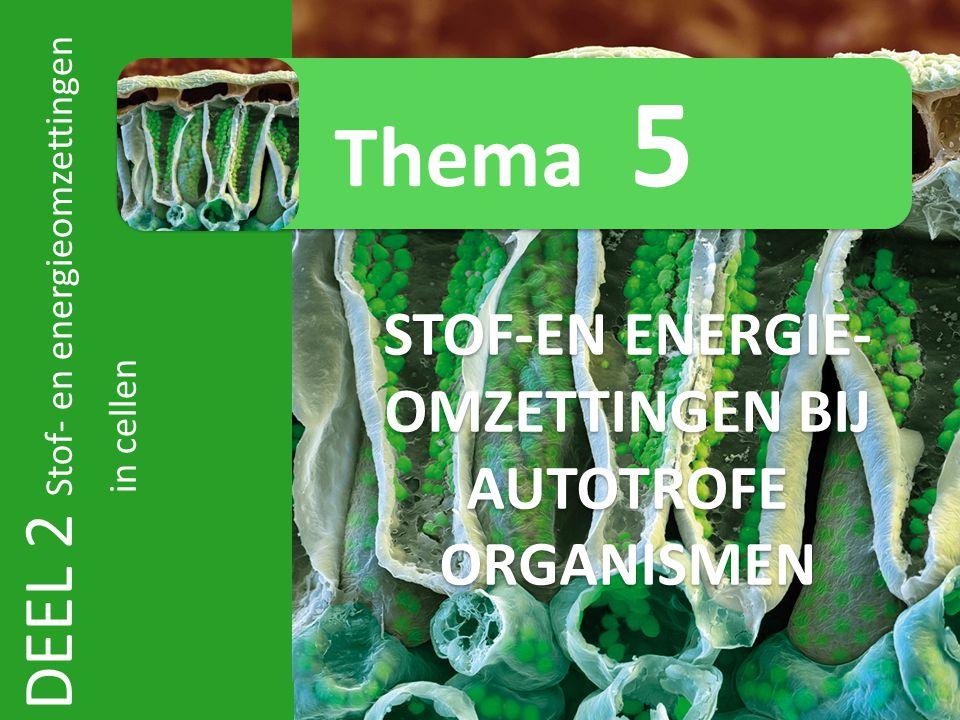 DEEL 2 Stof- en energieomzettingen in cellen STOF-EN ENERGIE- OMZETTINGEN BIJ AUTOTROFE ORGANISMEN Thema 5