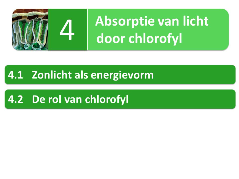 Absorptie van licht door chlorofyl Absorptie van licht door chlorofyl 4 4 4.1Zonlicht als energievorm 4.2De rol van chlorofyl