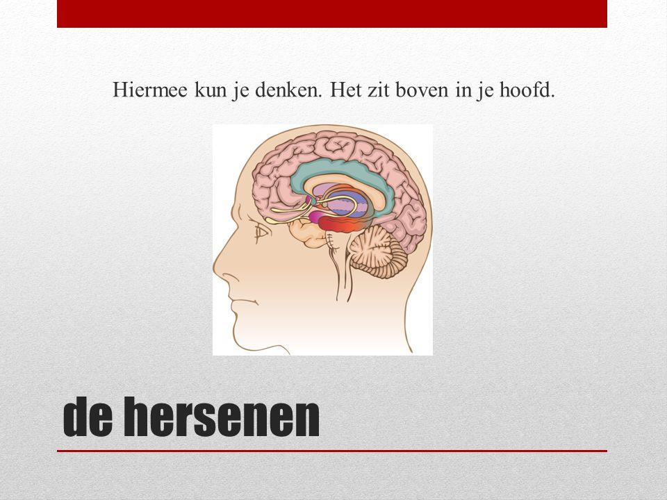 de hersenen Hiermee kun je denken. Het zit boven in je hoofd.