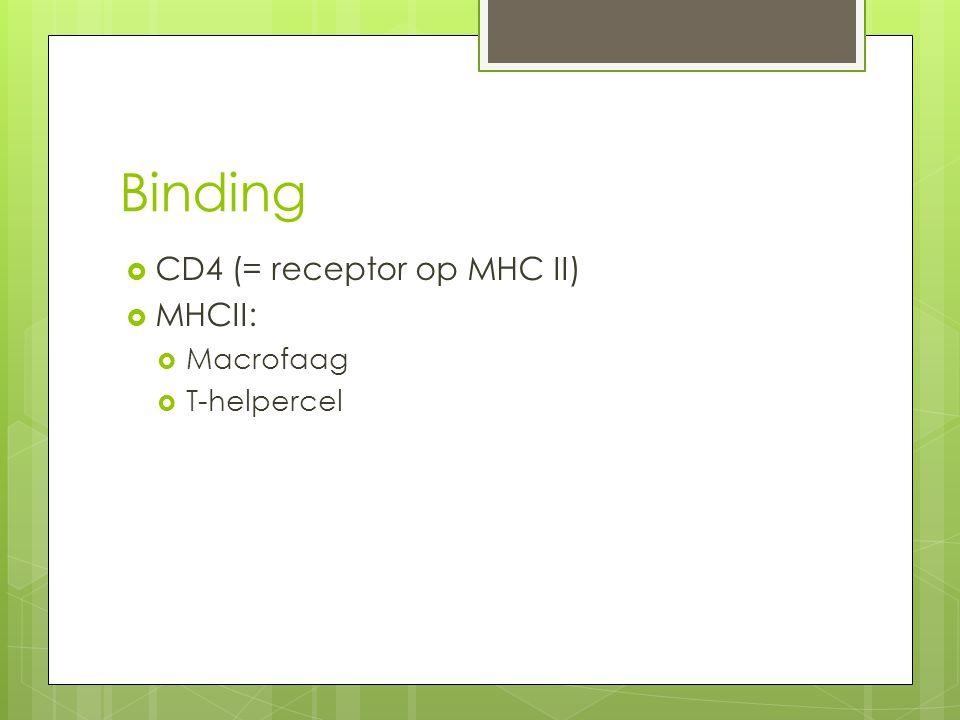 Binding  CD4 (= receptor op MHC II)  MHCII:  Macrofaag  T-helpercel