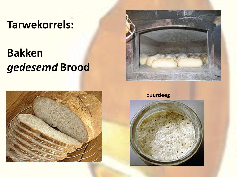 Tarwekorrels: Bakken gedesemd Brood zuurdeeg