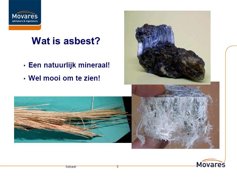 Onderwerpen Asbest, wat is het eigenlijk? - Hechtgebonden - Niet hechtgebonden - Eigenschappen Waarom is het zo desastereus? Risicoklasse Medische keu