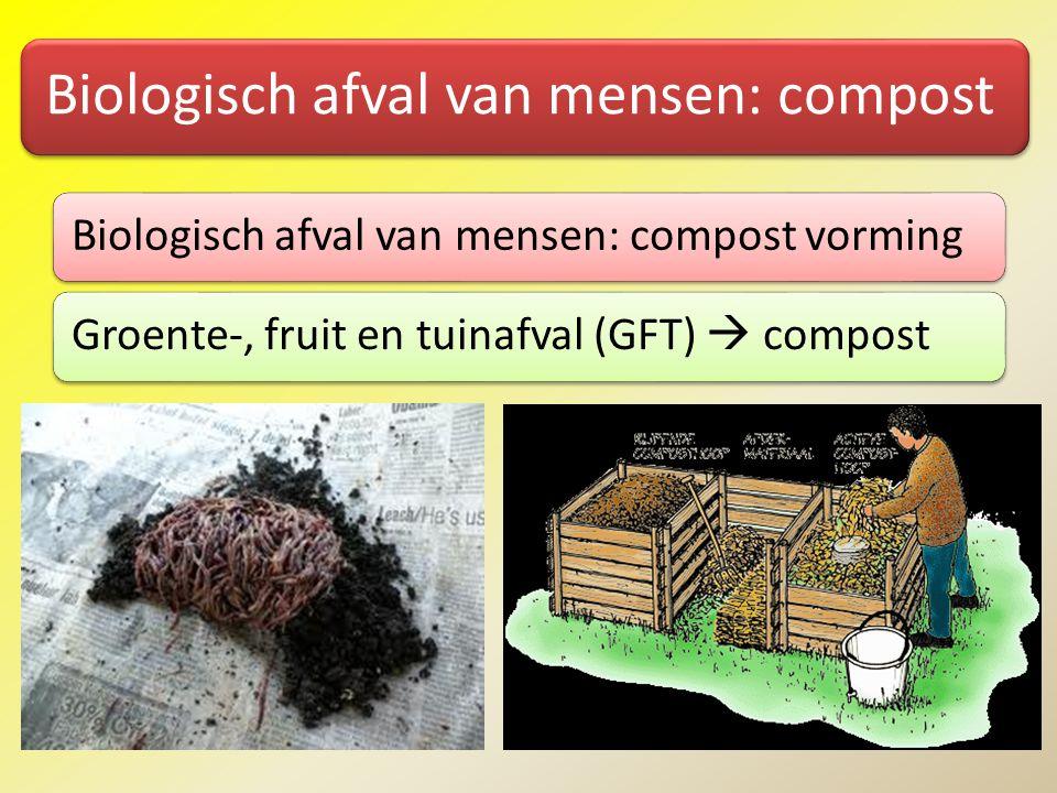 Biologisch afval van mensen: compost Biologisch afval van mensen: compost vormingGroente-, fruit en tuinafval (GFT)  compost