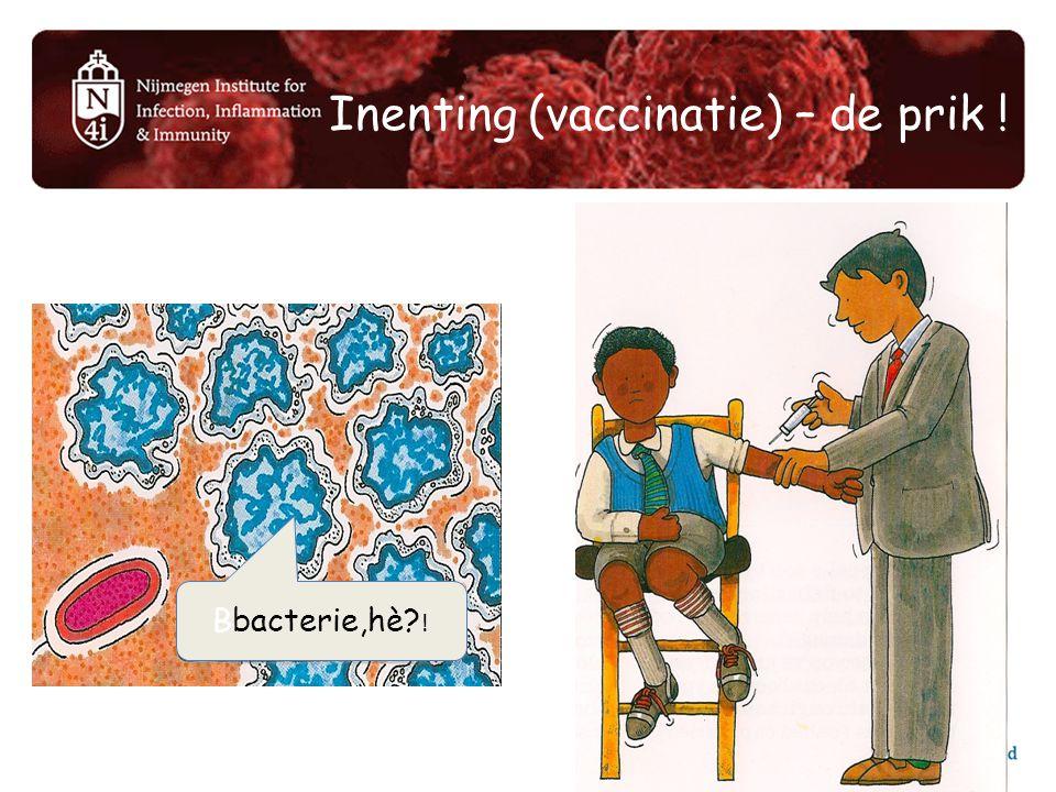 Inenting (vaccinatie) – de prik ! Bbacterie,hè? !