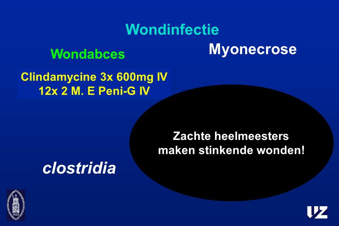 Wondinfectie Wondabces Myonecrose Necrotiserende fasciitis Gasgangreen clostridia Clindamycine 3x 600mg IV 12x 2 M. E Peni-G IV Zachte heelmeesters ma