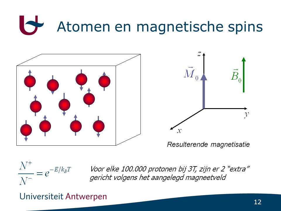 12 Atomen en magnetische spins Resulterende magnetisatie Voor elke 100.000 protonen bij 3T, zijn er 2 extra gericht volgens het aangelegd magneetveld