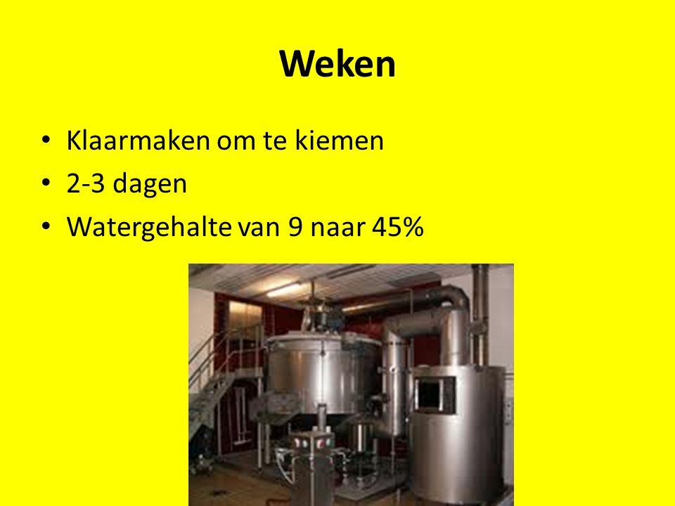 Hoofdgisting Gist/ zuurstof toegevoegd Suiker—Alcohol en CO2 Jong bier