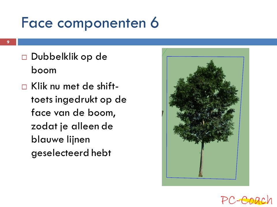 Face componenten 6  Dubbelklik op de boom  Klik nu met de shift- toets ingedrukt op de face van de boom, zodat je alleen de blauwe lijnen geselecteerd hebt 9
