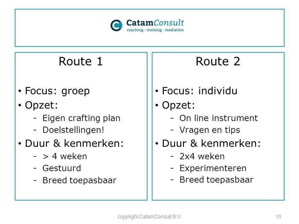 Route 1 Focus: groep Opzet: -Eigen crafting plan -Doelstellingen! Duur & kenmerken: -> 4 weken -Gestuurd -Breed toepasbaar copyright CatamConsult B.V.