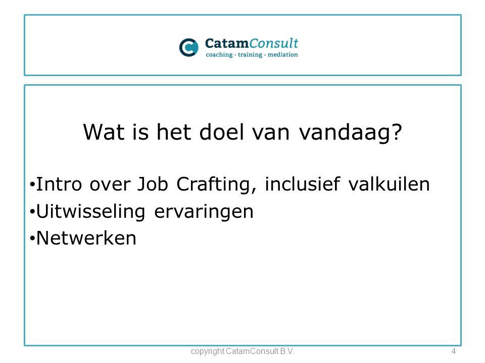 Wat is het doel van vandaag? Intro over Job Crafting, inclusief valkuilen Uitwisseling ervaringen Netwerken copyright CatamConsult B.V.4