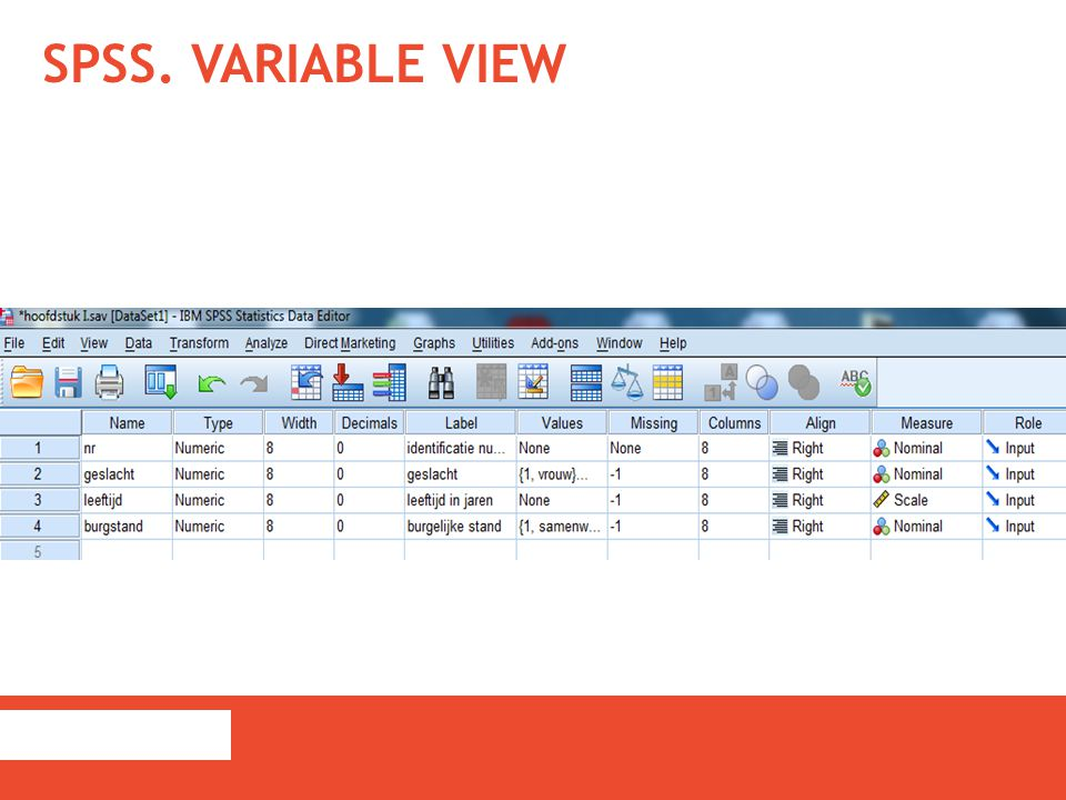 SPSS. VARIABLE VIEW