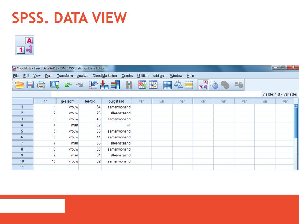 SPSS. DATA VIEW