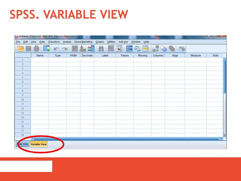 Name: naam van de variabele; dit gegeven komt in de data file boven de kolom van de variabele staan; tal van beperkingen (bv.