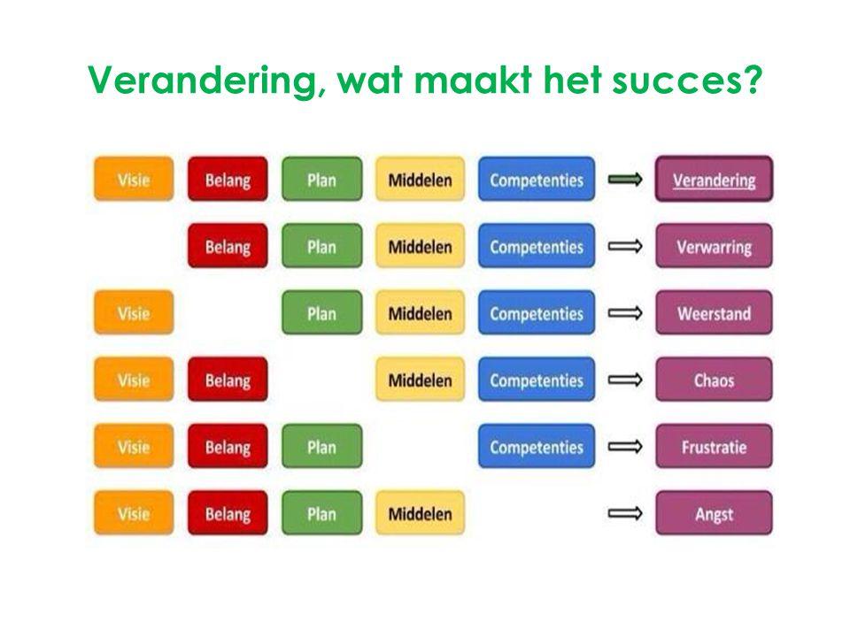Verandering, wat maakt het succes?