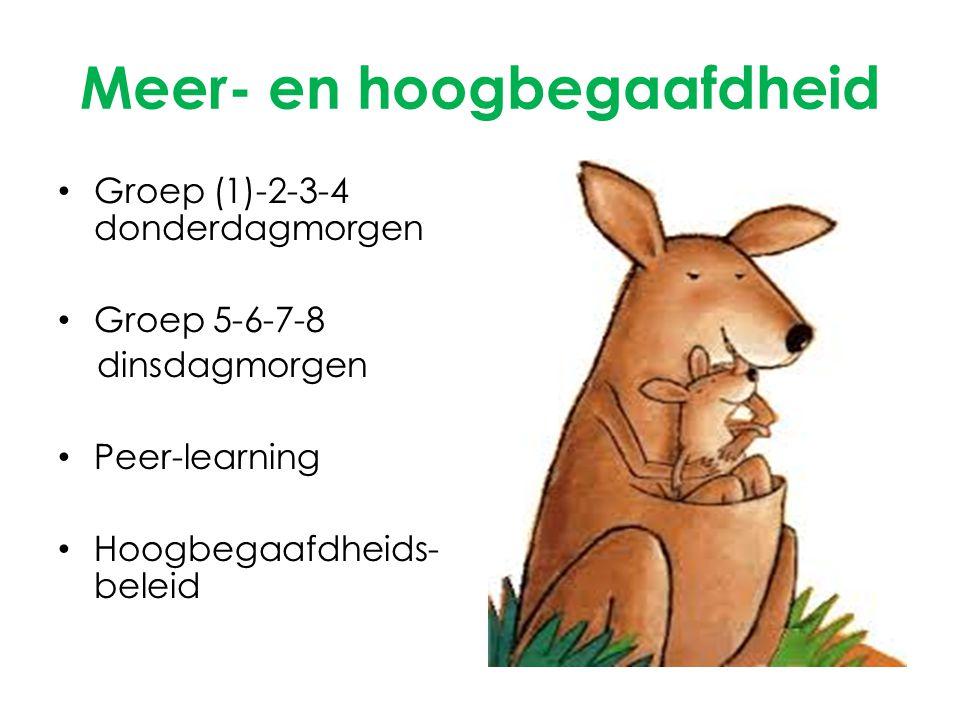 Meer- en hoogbegaafdheid Groep (1)-2-3-4 donderdagmorgen Groep 5-6-7-8 dinsdagmorgen Peer-learning Hoogbegaafdheids- beleid