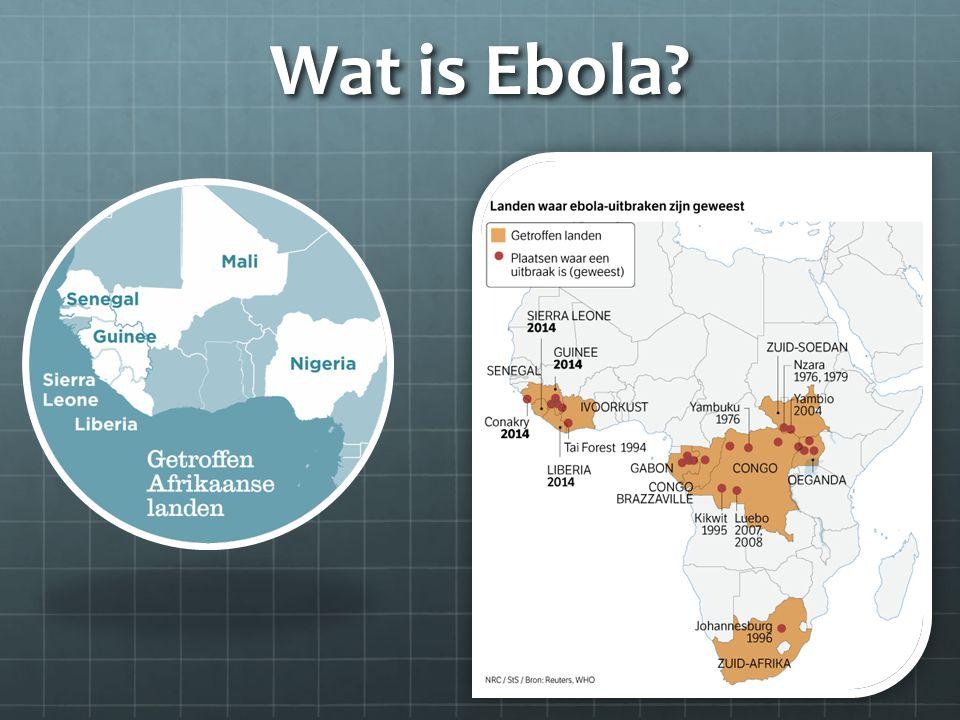 Wat is Ebola?
