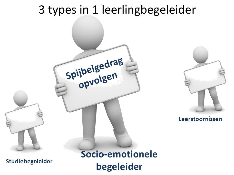 3 types in 1 leerlingbegeleider Studiebegeleider Leerstoornissen Socio-emotionele begeleider Spijbelgedrag opvolgen