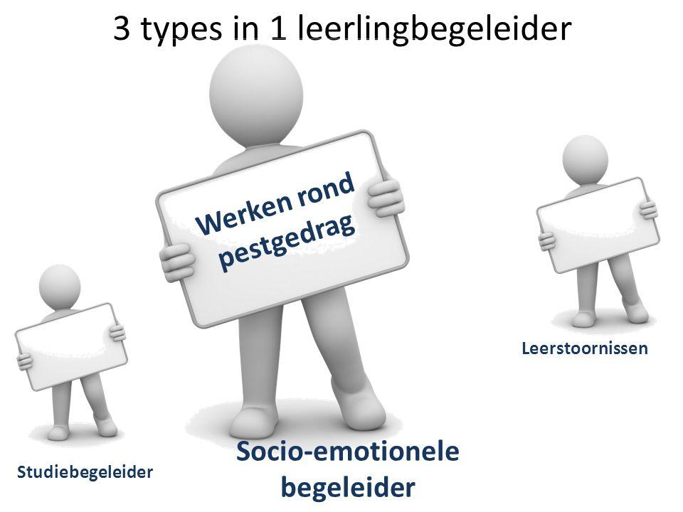 3 types in 1 leerlingbegeleider Studiebegeleider Leerstoornissen Socio-emotionele begeleider Werken rond pestgedrag