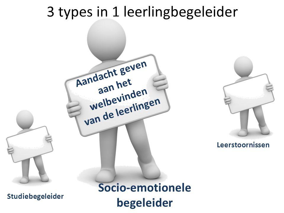 3 types in 1 leerlingbegeleider Studiebegeleider Leerstoornissen Socio-emotionele begeleider Aandacht geven aan het welbevinden van de leerlingen