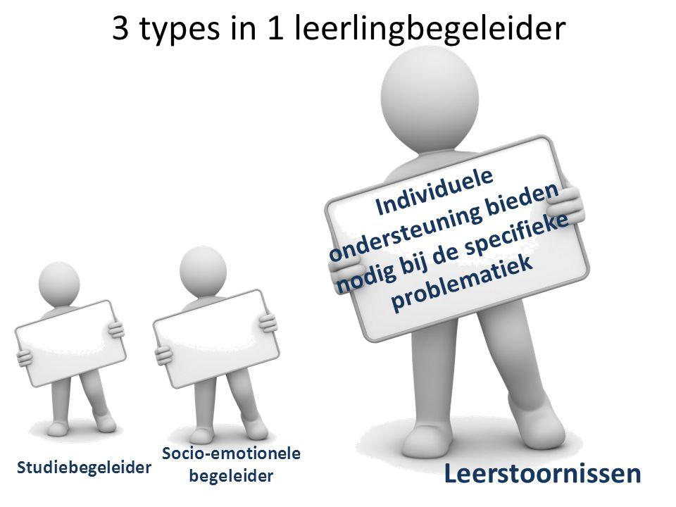 3 types in 1 leerlingbegeleider Studiebegeleider Socio-emotionele begeleider Leerstoornissen Individuele ondersteuning bieden nodig bij de specifieke
